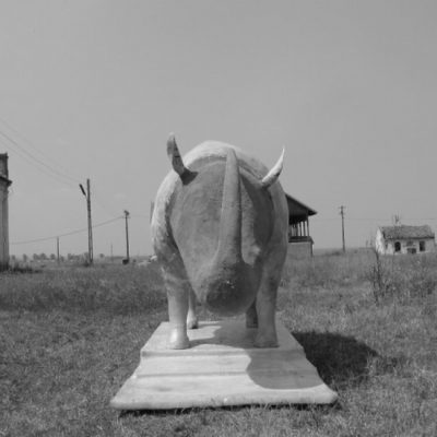 Rhinoceros, 2009, syntheric resins, 250 x 180 x 180 cm, The work is located in the Cetate village, Dolj, Romania