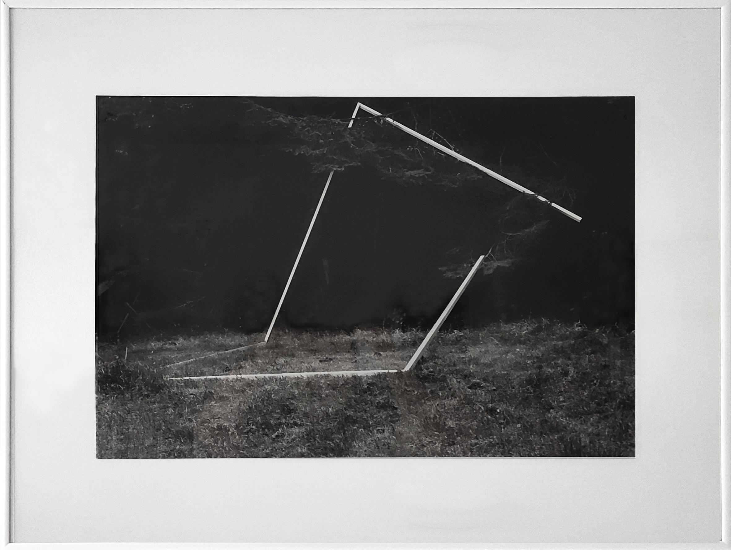 Diet Sayler, Waldraum V., 1980, Installation, Odenwald, Fotografie, 40x60cm | 62x81cm, Edition 1:7